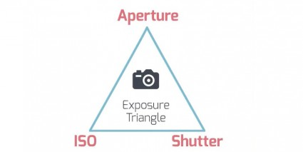 EXPOSURE BY PANT