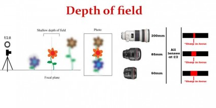 Depth of field in Photography