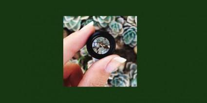 macro lens by pawan